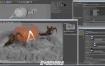 C4D阿诺德渲染器 SolidAngle C4DtoA 3.0.4 R20/R21/S22 Win替换破解版